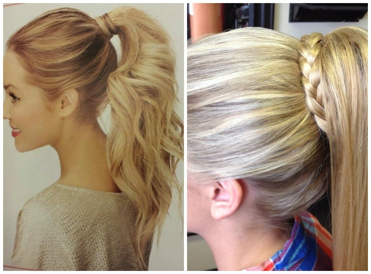 1 High Ponytail With Braid Wrapped Around (View 8 of 15)
