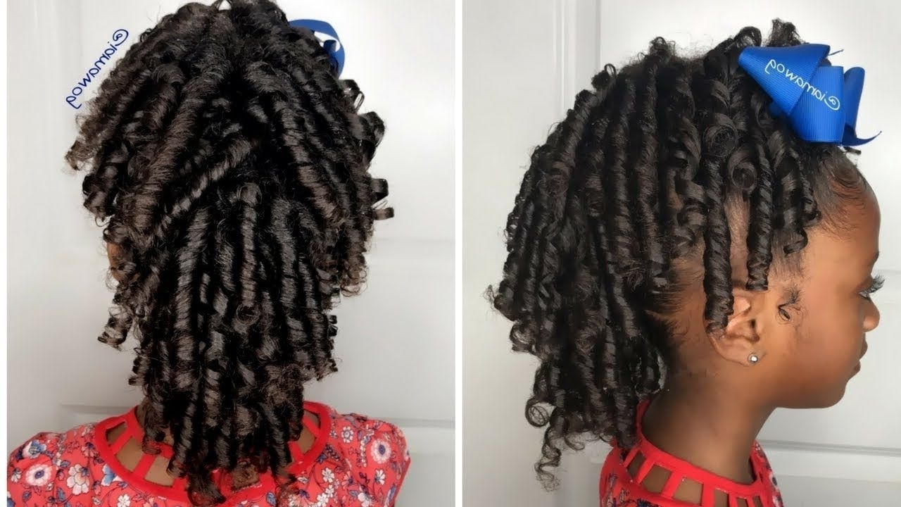 2017 Revamped Braided Ponytail Within Curly Fro Hawk Revamp (View 3 of 15)