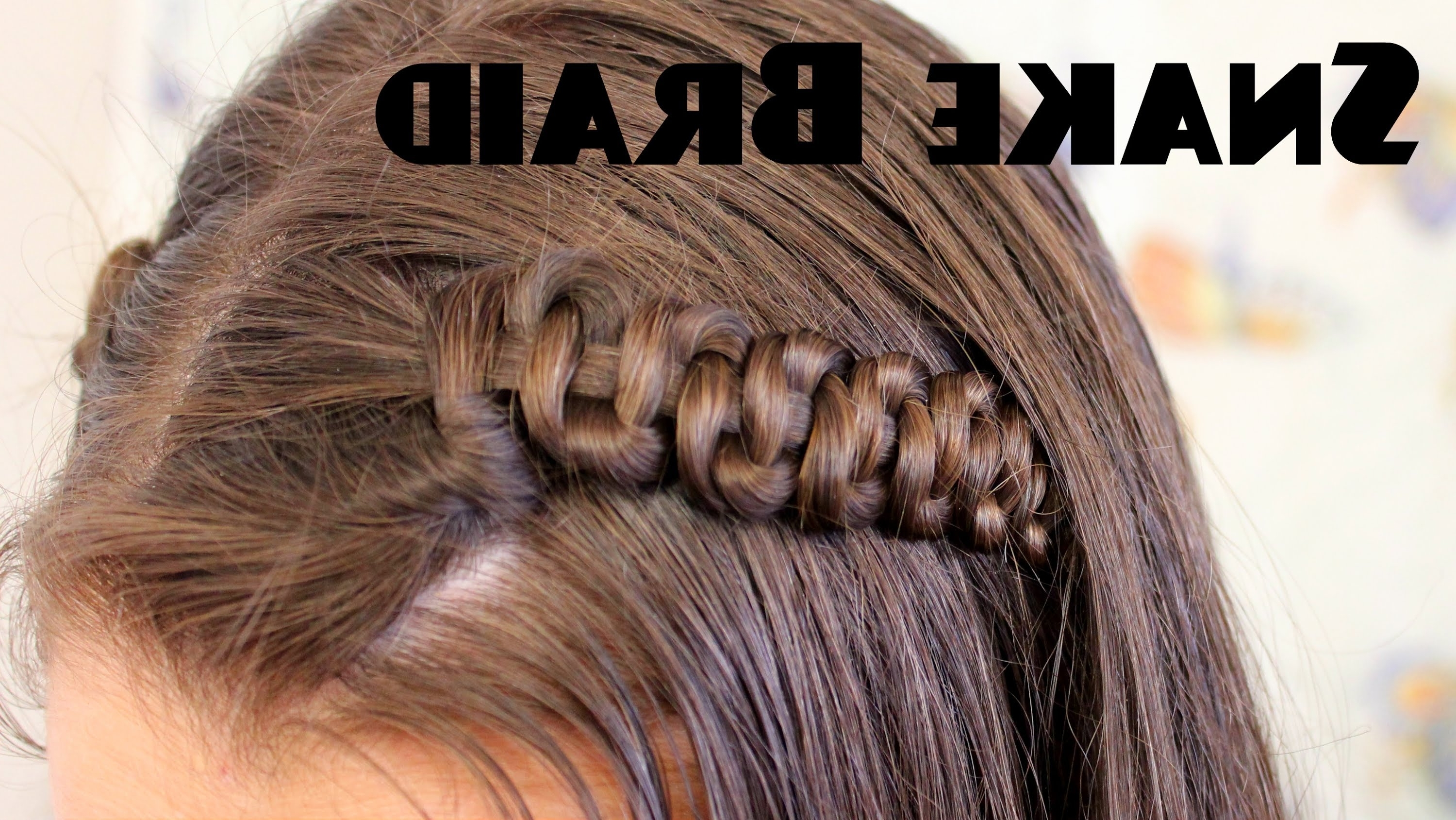 2017 Snake Braids Hairstyles Pertaining To Snake Braid Tutorial – Youtube (View 1 of 15)
