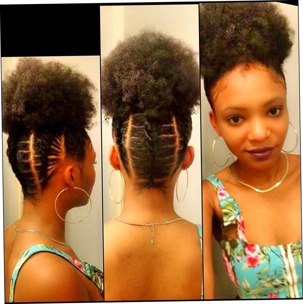 2018 Natural Cornrow Hairstyles Regarding 19+ About Black Natural Cornrow Hairstyles  (View 2 of 15)