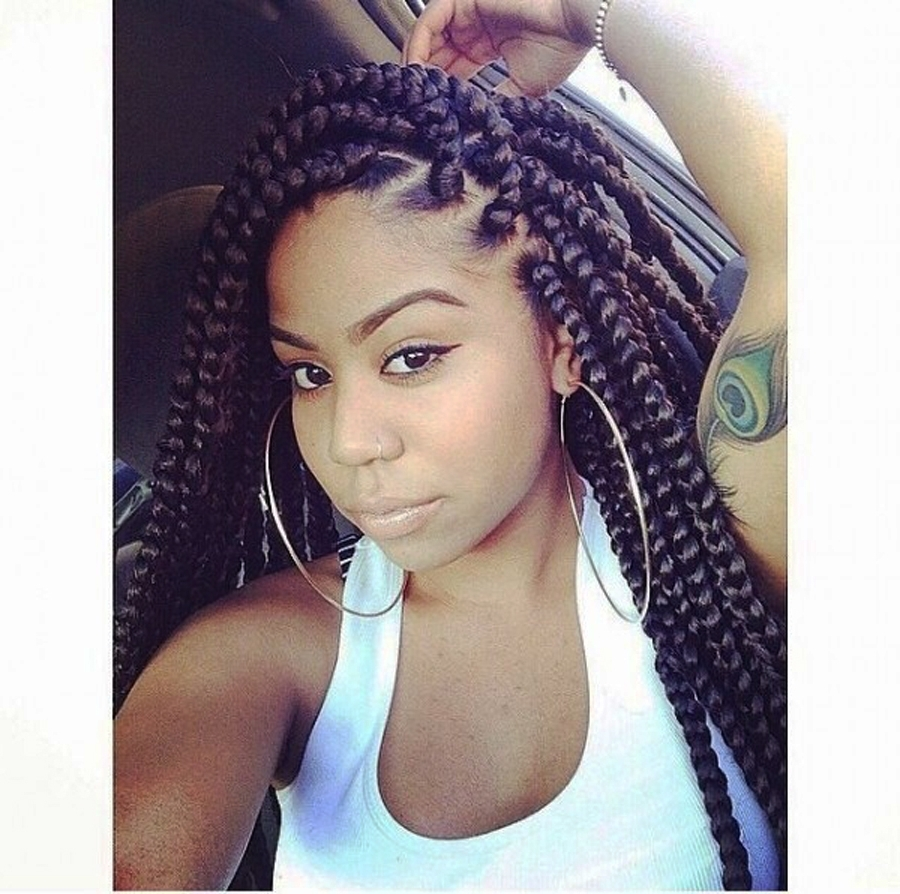 27 Big Braids Hairstyles For Women (View 2 of 15)