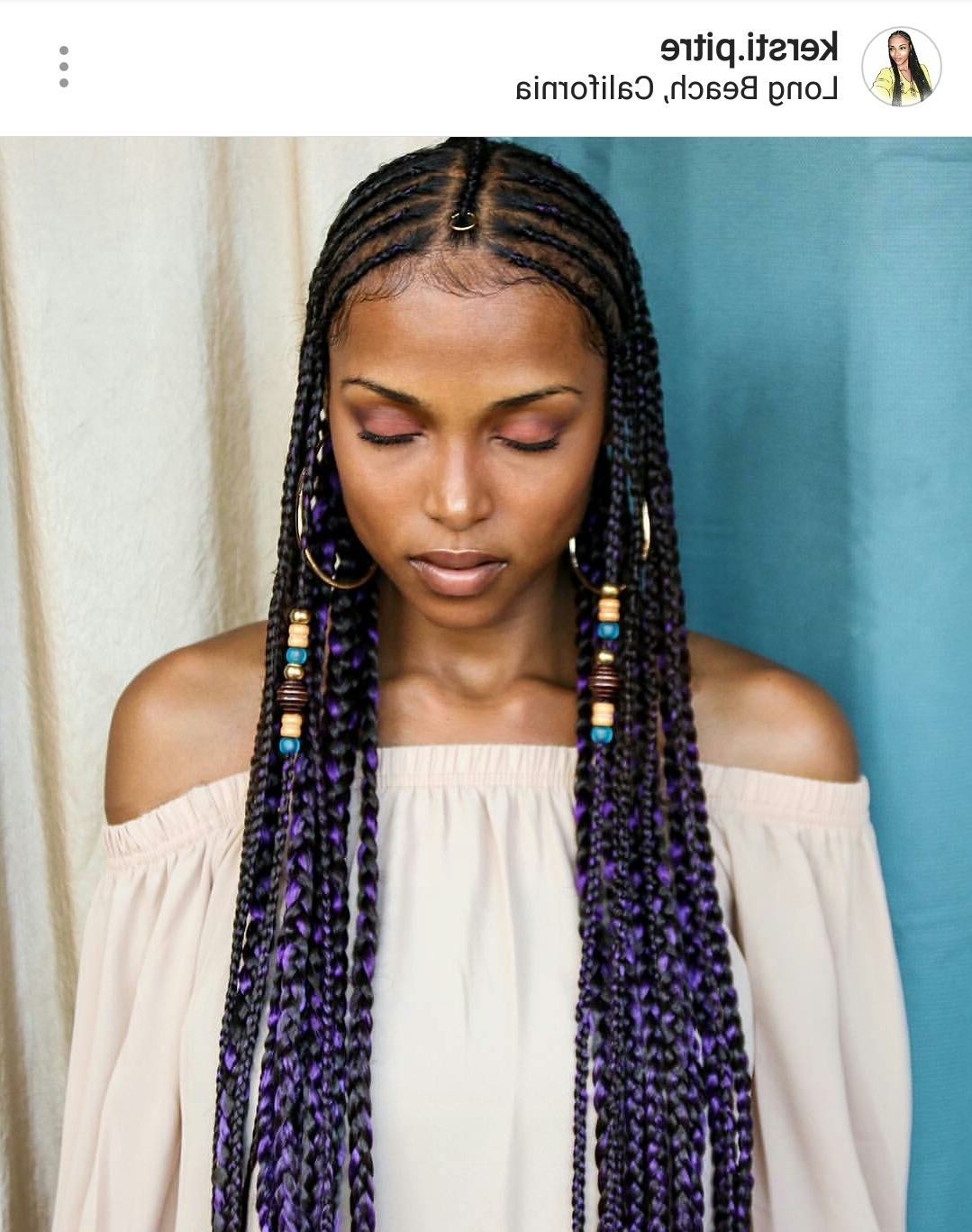 27 Braid And Cornrow Hairstyle Ideas (View 7 of 15)