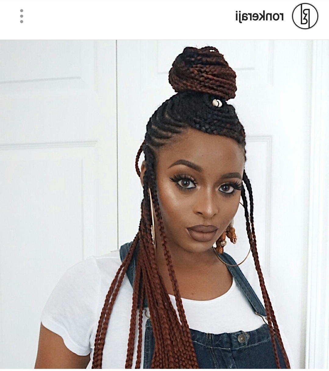 27 Braid And Cornrow Hairstyle Ideas (View 1 of 15)