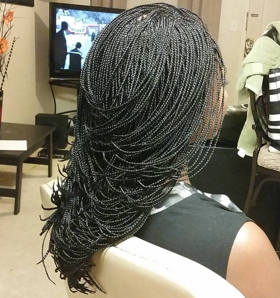40 Ideas Of Micro Braids, Invisible Braids And Micro Twists Inside Famous Asymmetrical Braids With Curly Pony (View 5 of 15)