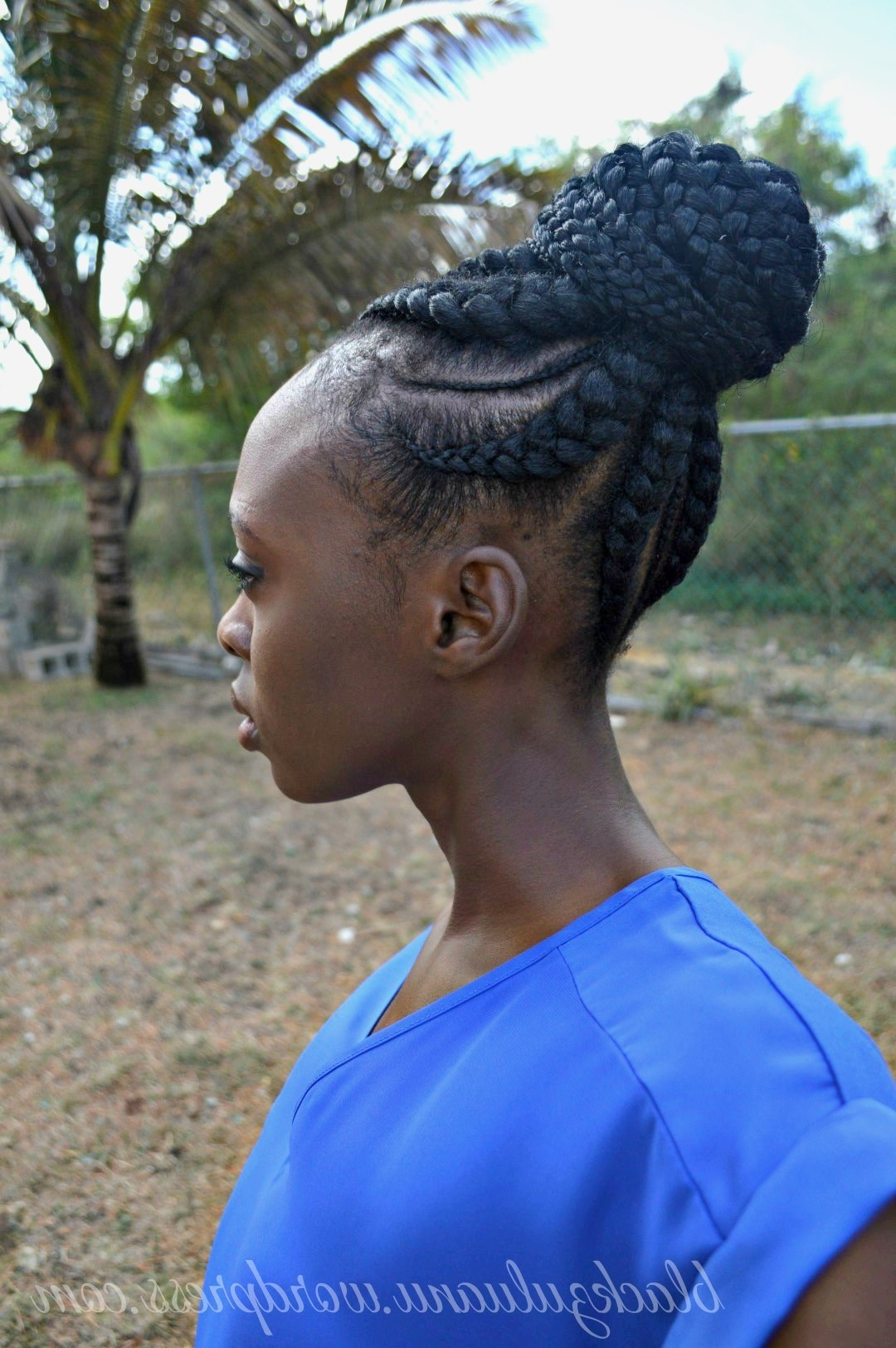 Be Inspired: Cornrow Updo – Black Zulu In 2017 Big Updo Cornrows Hairstyles (View 4 of 15)