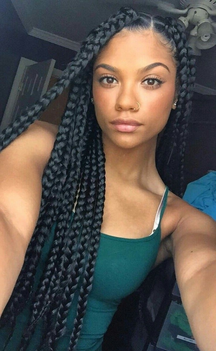 Box Braids Hairstyles (View 4 of 15)