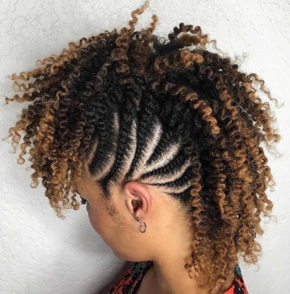 Featured Photo of Curly Mohawk With Flat Twisted Sides