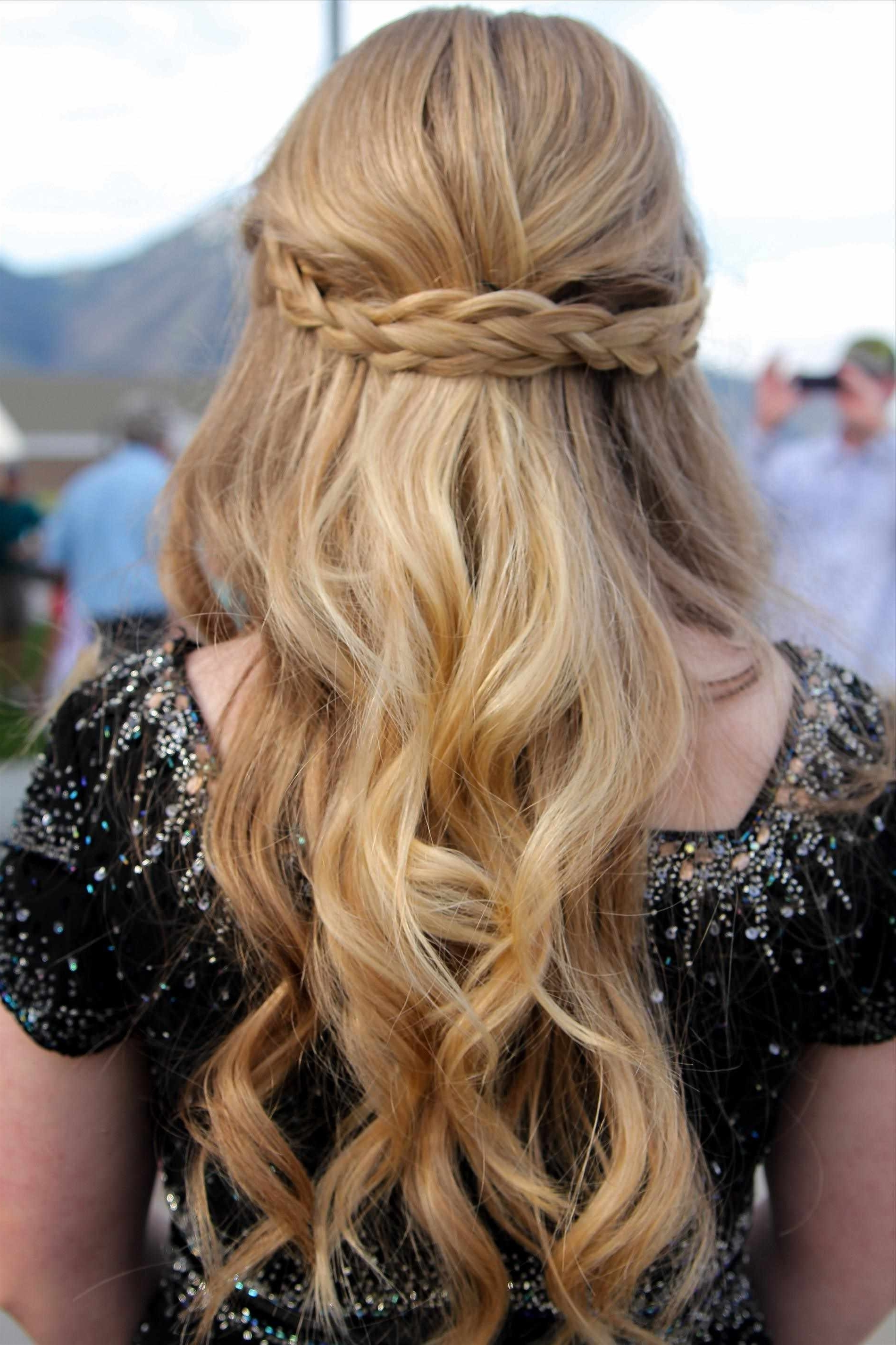 Brilliant Ideas Of Braided Curly Hairstyles Perfect Half Braid In Recent Braided Hairstyles With Hair Down (View 11 of 15)