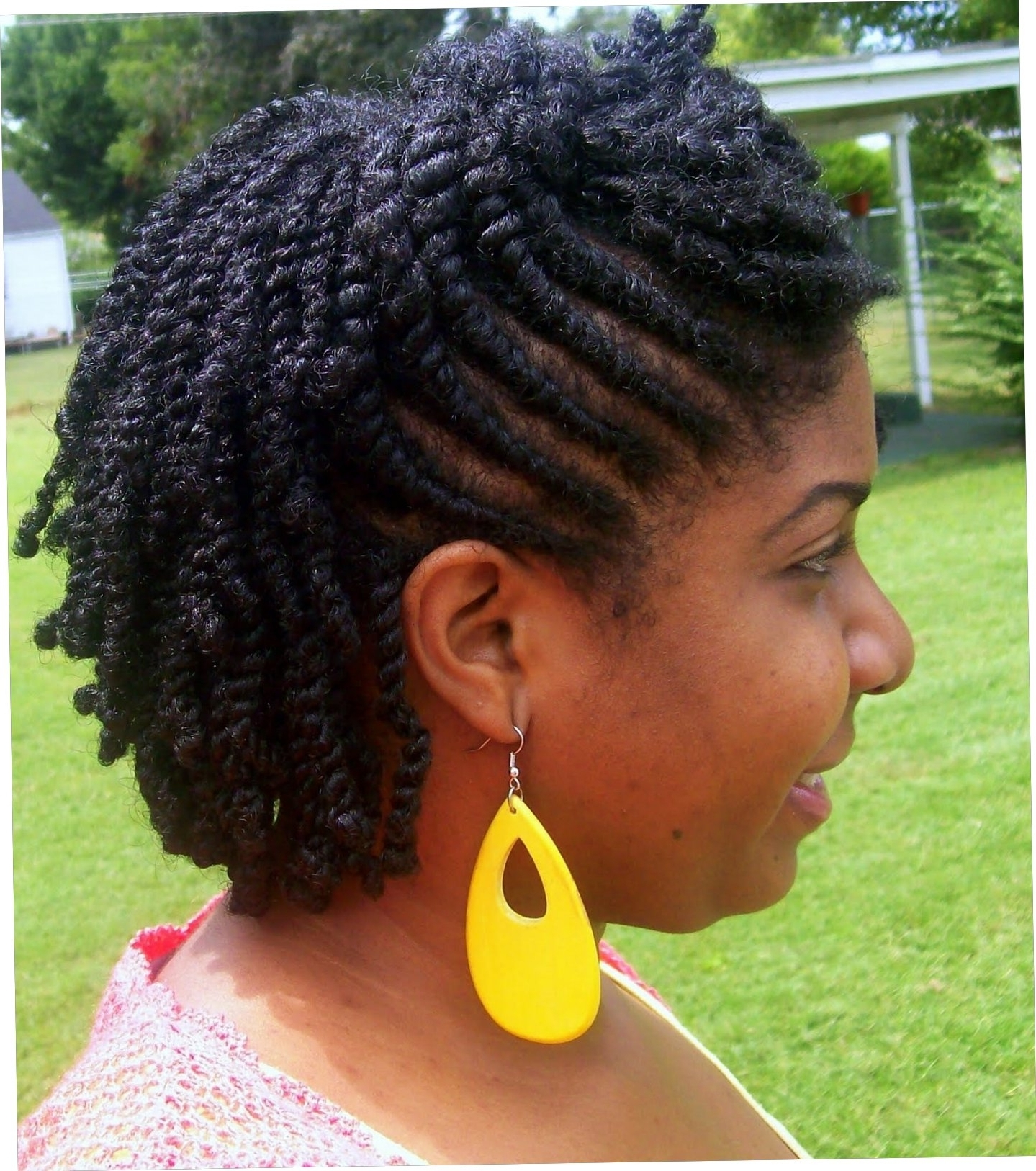 Featured Photo of Natural Cornrows And Twist Hairstyles