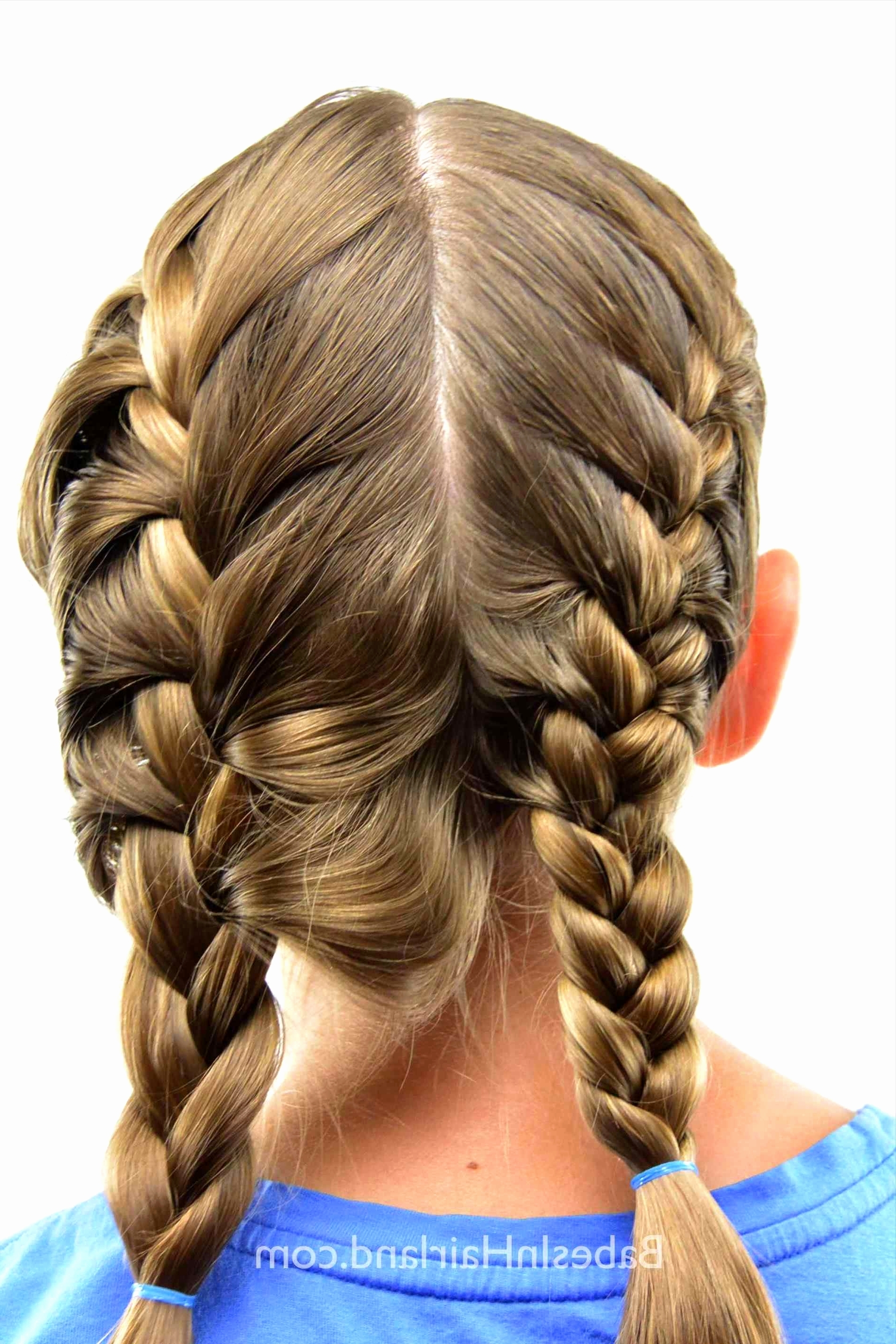 Emejing French Braid Hairstyles Ideas – Styles & Ideas 2018 – Sperr Within Latest French Braid Hairstyles (View 10 of 15)