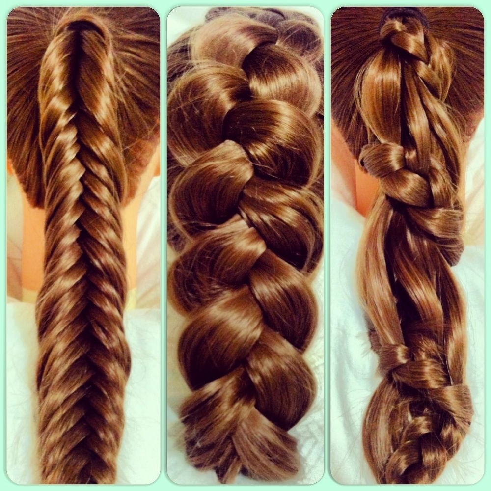 Favorite Reverse Braid And Side Ponytail With Carousel Winding Lace Braid Ponytail • Pancake French Braid (View 9 of 15)