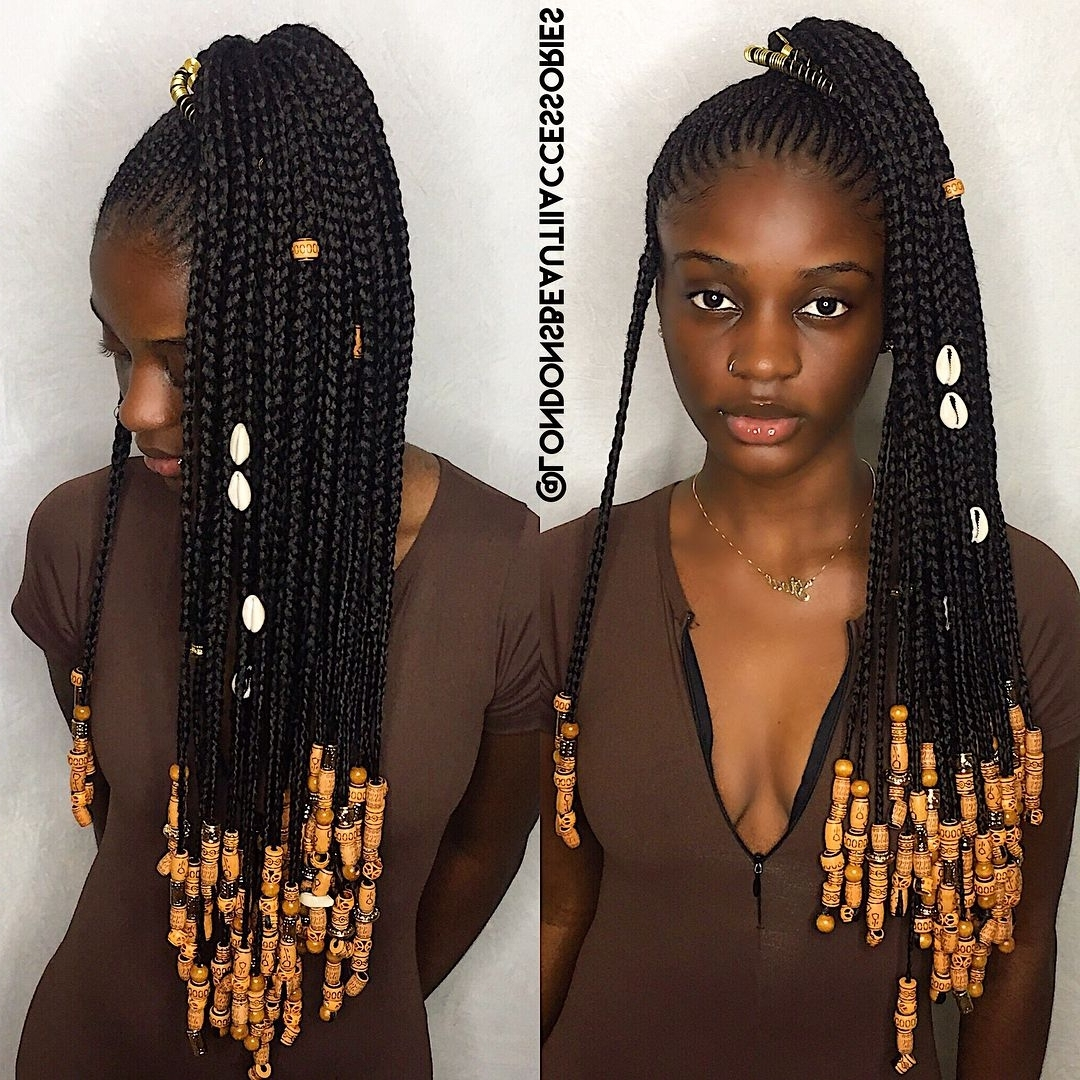 Featured Photo of Classic Fulani Braids With Loose Cascading Plaits