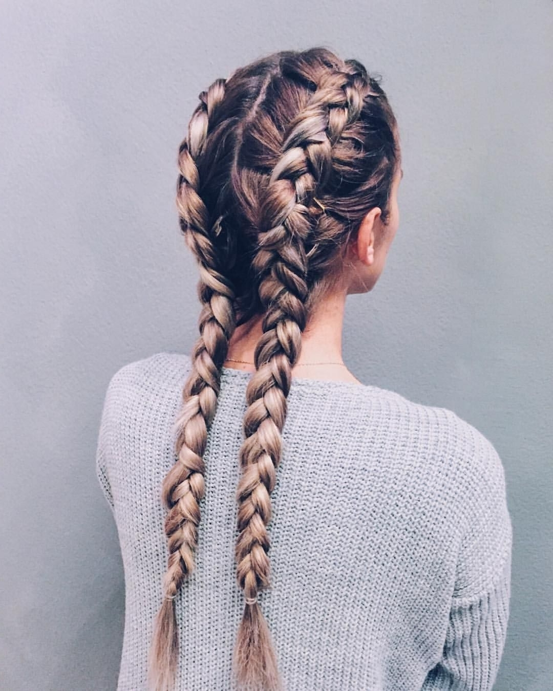 Hairstyles For Trendy Two Classic Braids Hairstyles (View 7 of 15)