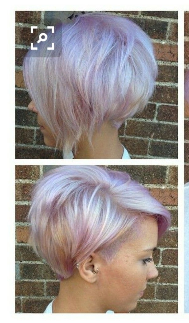 Featured Photo of Lavender Pixie Bob Haircuts