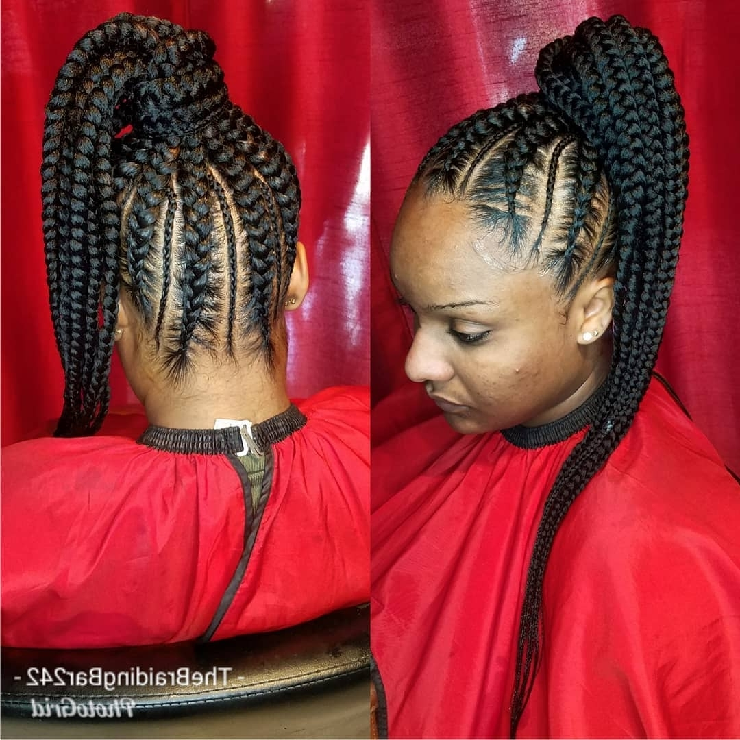 Hairstyles With Most Current Two Tone Braided Pony Hairstyles (View 15 of 15)