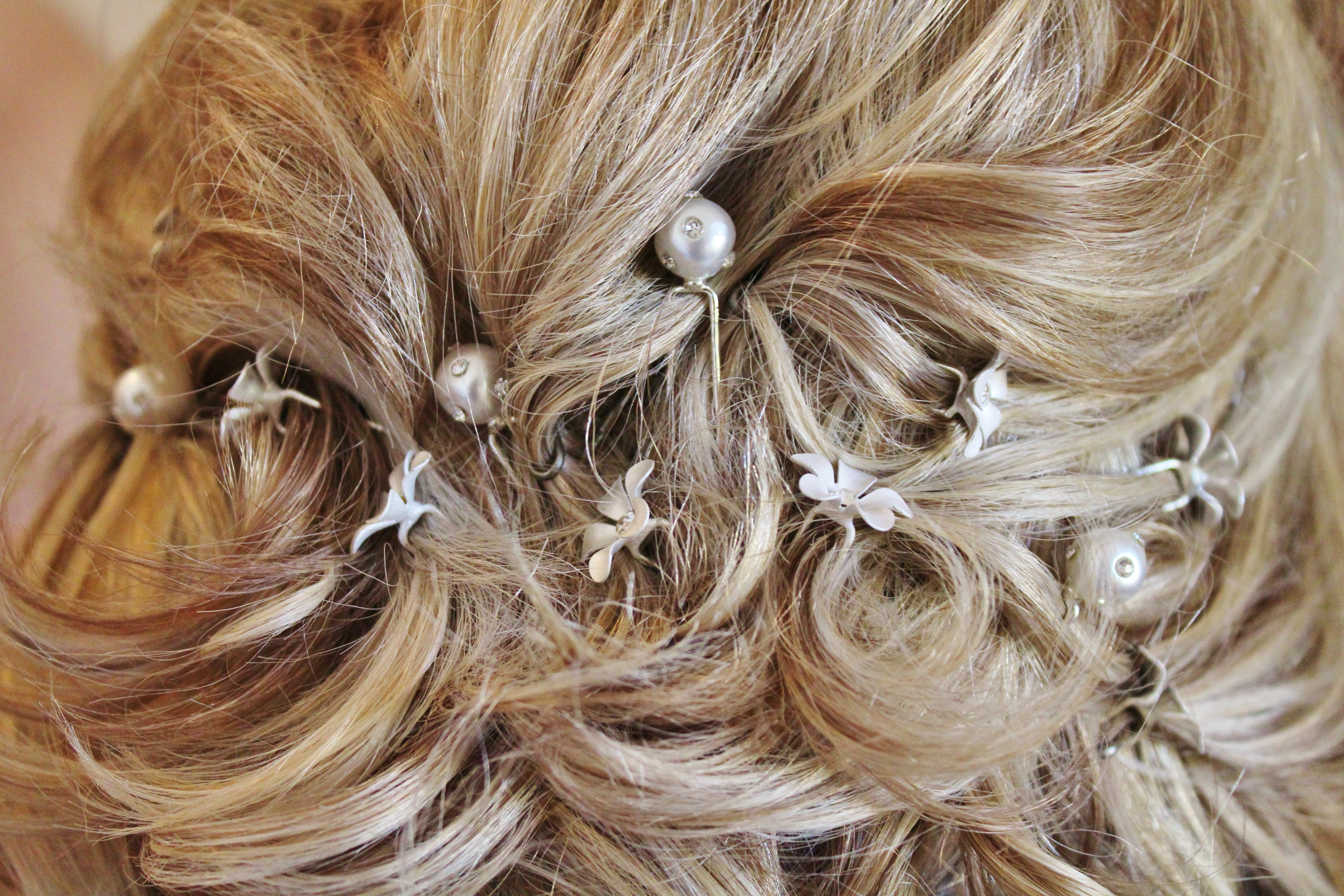 Latest Pinned Up French Plaits Hairstyles Intended For Free Images : Bride, Hairstyle, Long Hair, Blond, Beads, Hairdresser (View 9 of 15)