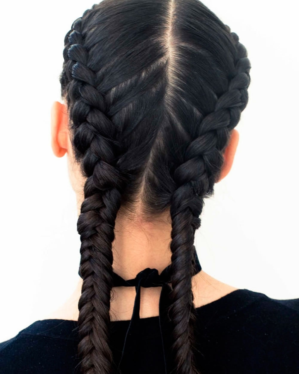 Most Current Double French Braids And Ponytails Regarding 21 French Braid Hairstyles – All You Need To Know About French (View 12 of 15)