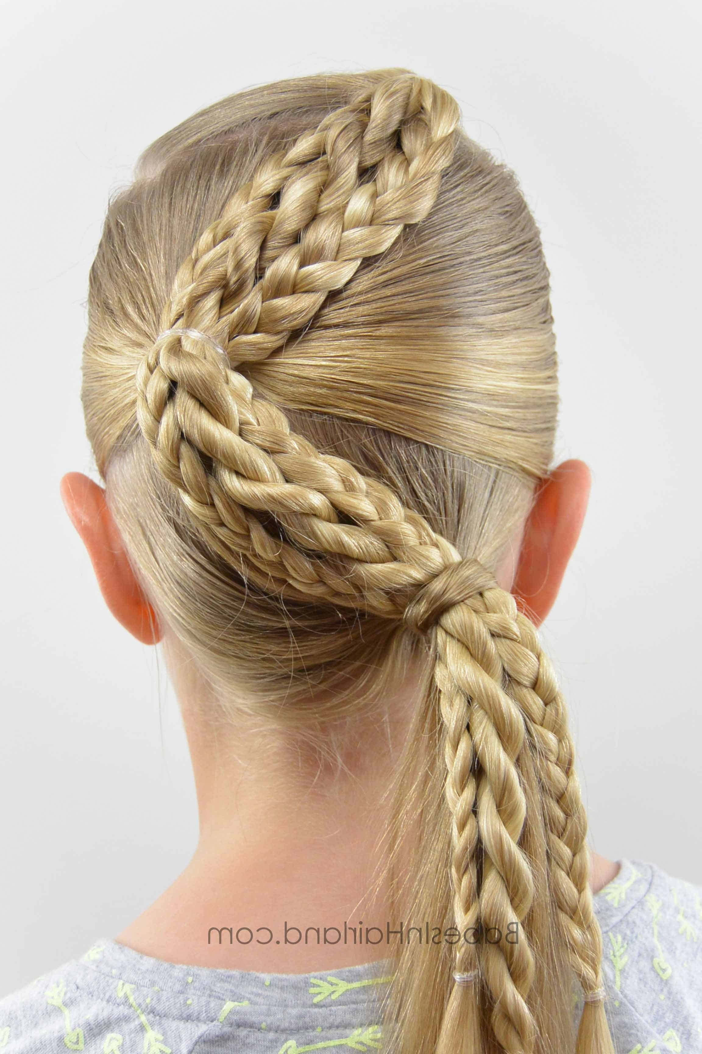 Most Current Zig Zag Braided Hairstyles In Zig Zag Braids – Babes In Hairland (View 5 of 15)
