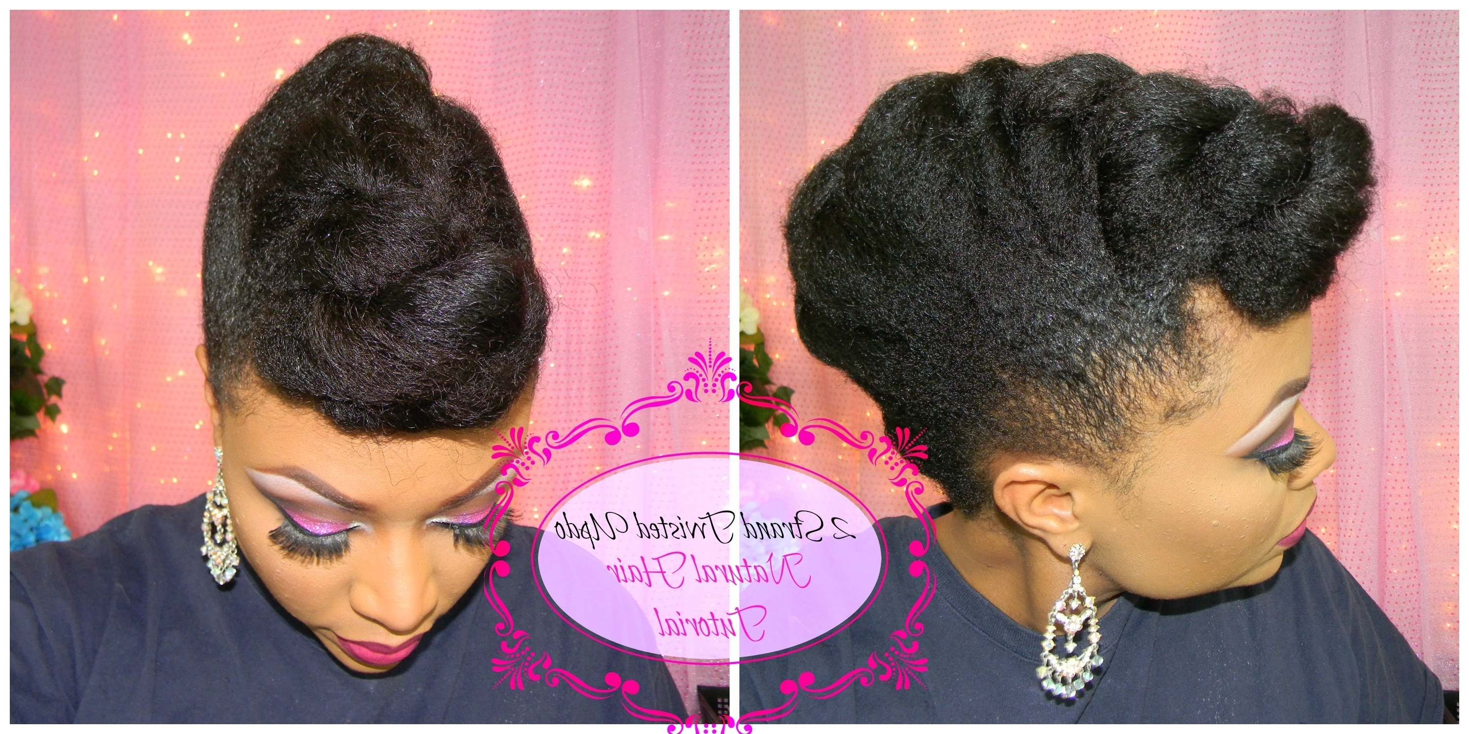 Most Popular Jumbo Double Twisted Updo With Natural Hair Tutorial (View 2 of 15)