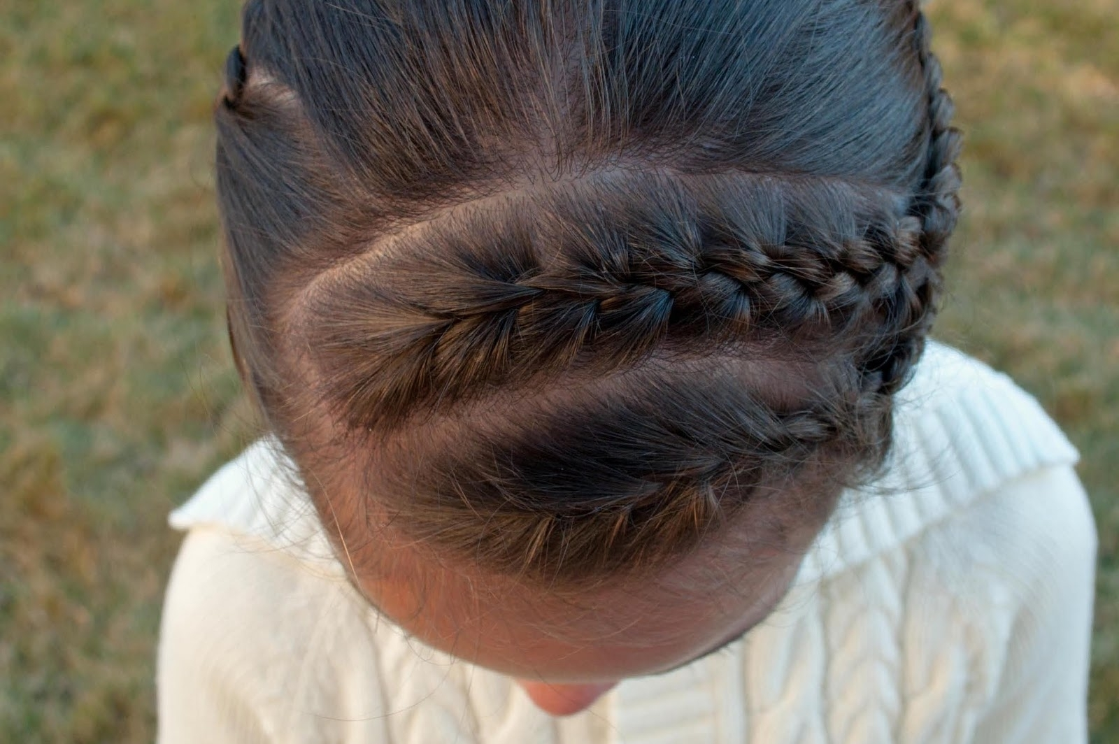 Most Recently Released Diagonal Two French Braid Hairstyles In Maiden Braid ~ New Hairstyles Today (View 11 of 15)