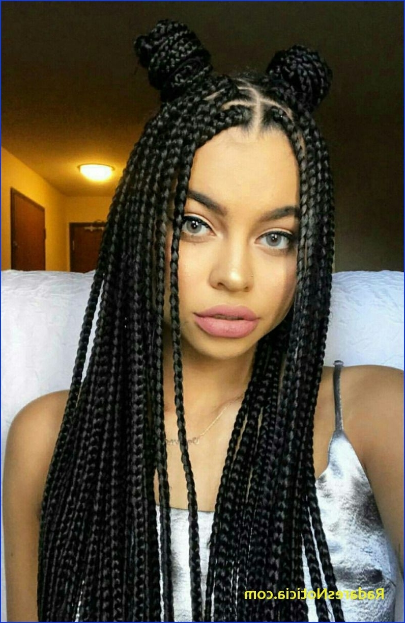 Most Up To Date Cornrows African American Hairstyles In African American Braided Hairstyles Braids African American Braided (View 9 of 15)