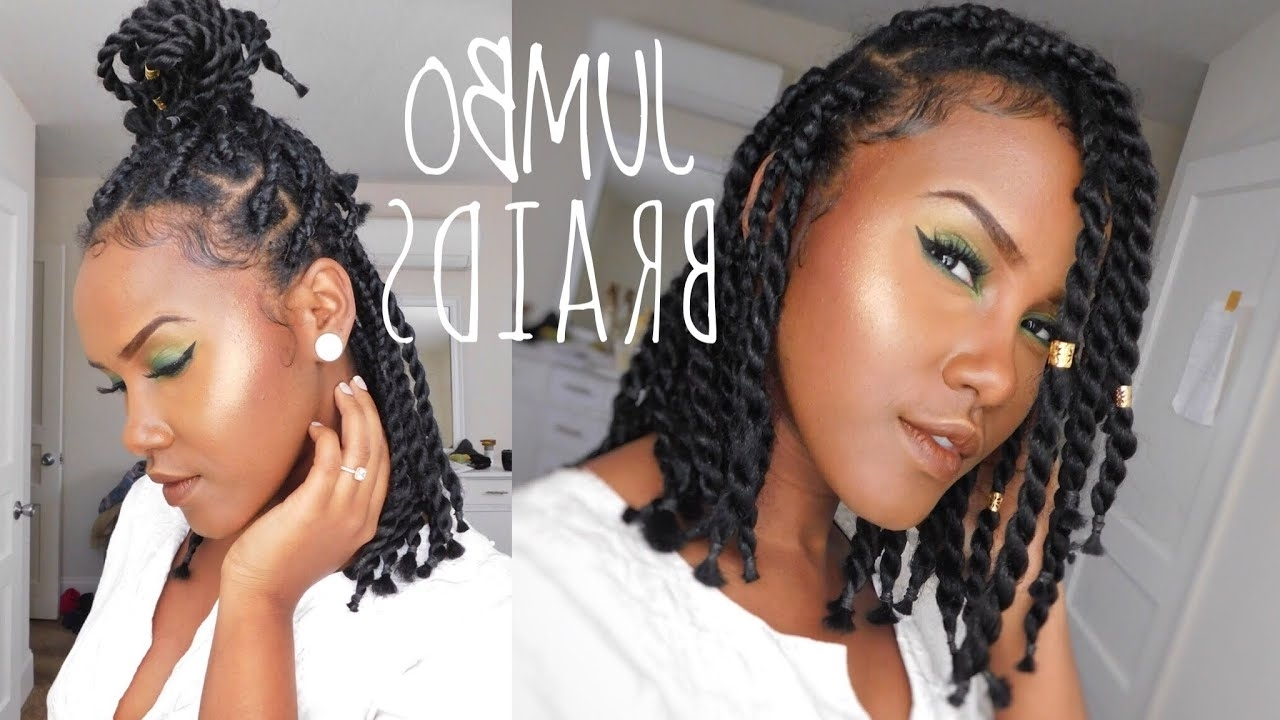 Most Up To Date Long Chunky Black Braids Hairstyles In How To Do Short Chunky Jumbo Box Braid/twist On Natural Hair (View 7 of 15)