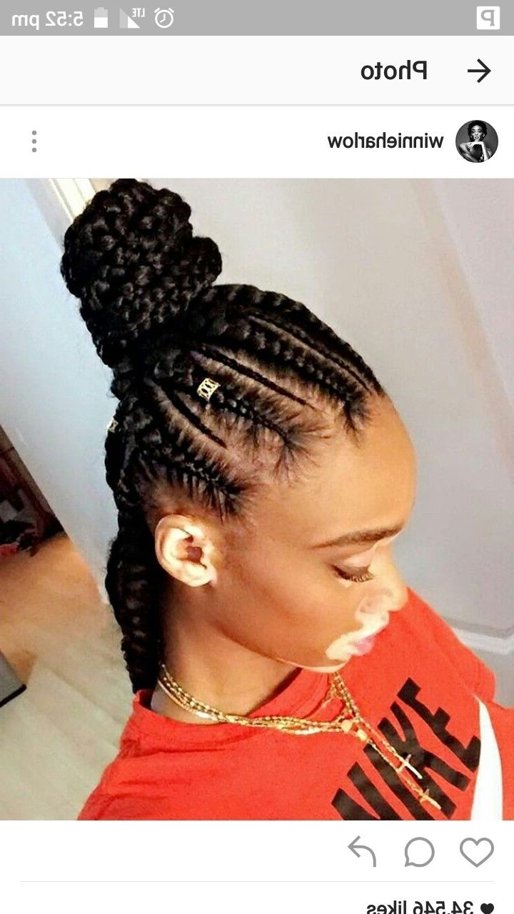 Newest Feed In Bun With Ghana Braids Throughout Feed In Braids With Bun (View 4 of 15)