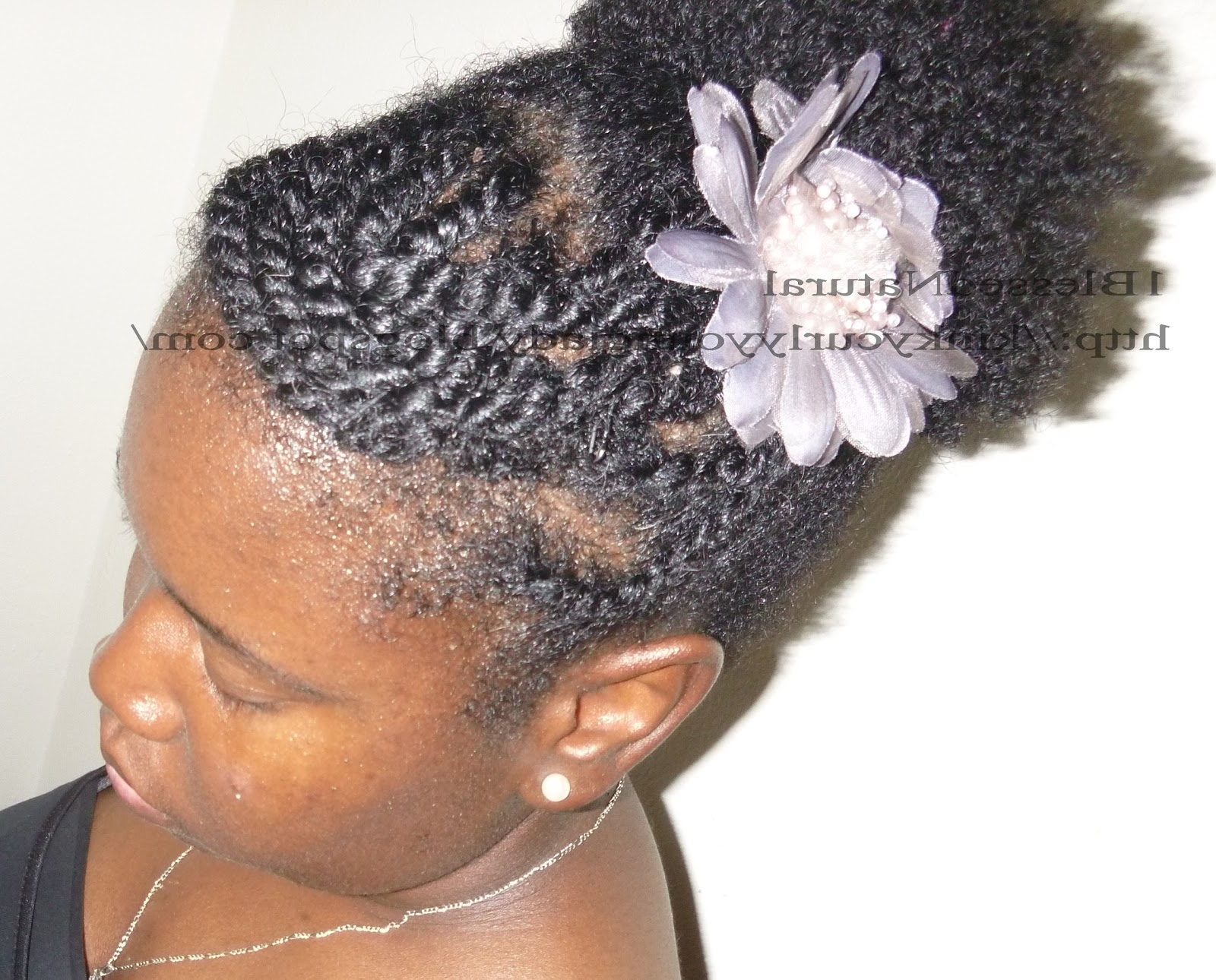 Newest Reverse Flat Twists Hairstyles For Puff With Side Flat Twists And Swoop Bang (View 12 of 15)