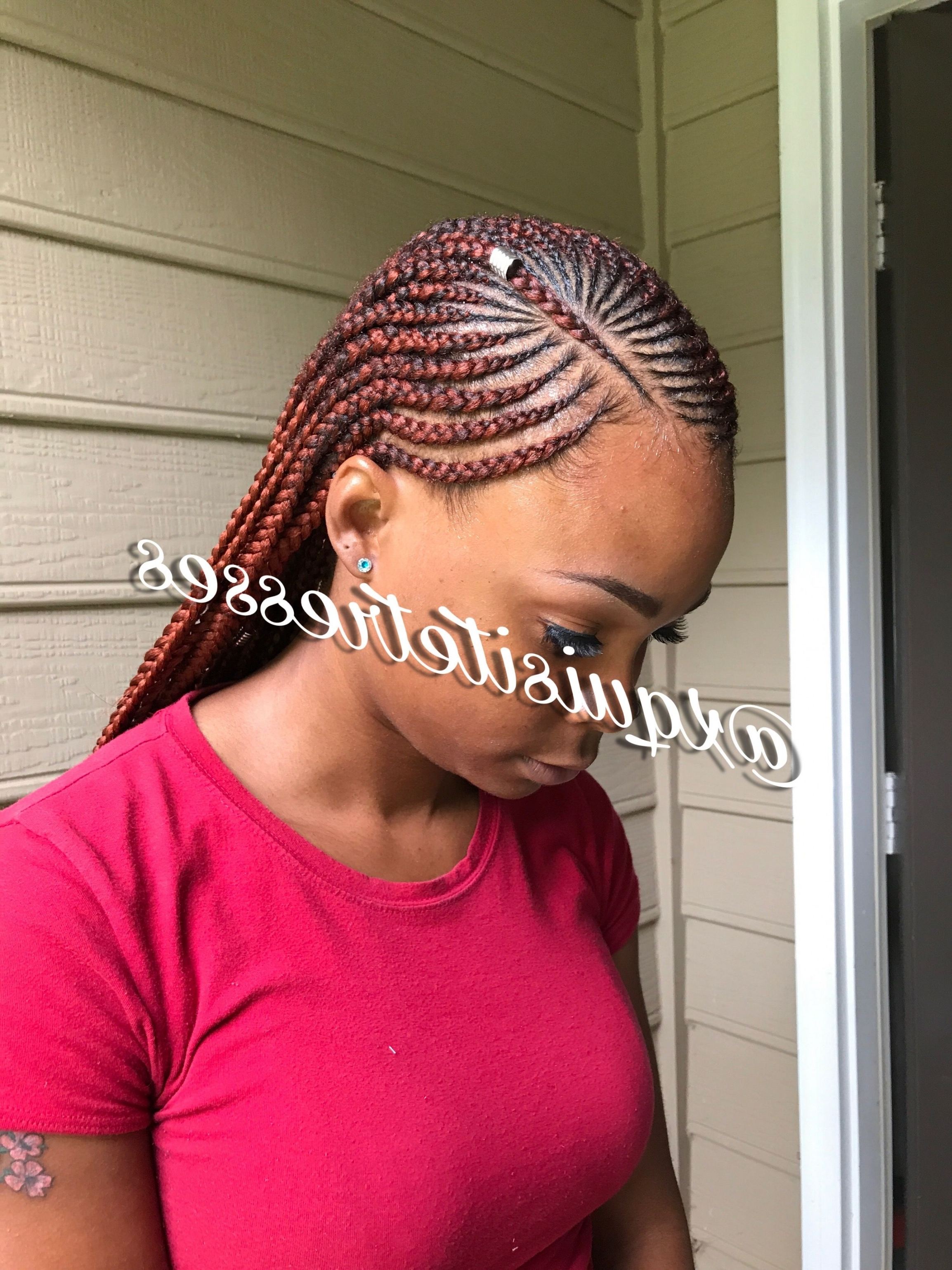 Newest Small Cornrows Hairstyles Regarding African American Woman Small Cornrows Hairstyles 2018 – Orlandowhite (View 13 of 15)