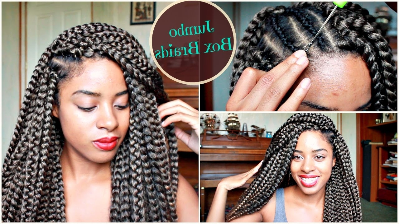 Newest Two Extra Long Braids For Crochet Jumbo Box Braids In 2 Hours (View 11 of 15)