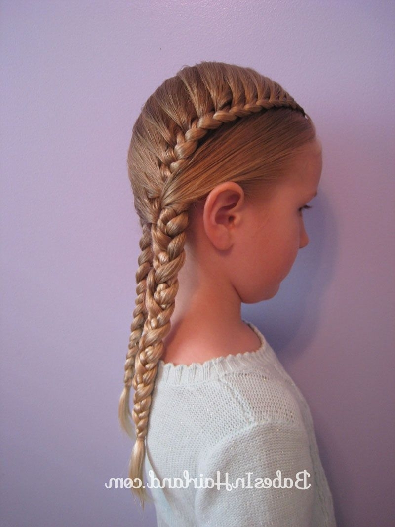 Featured Photo of Pocahontas Braids Hairstyles