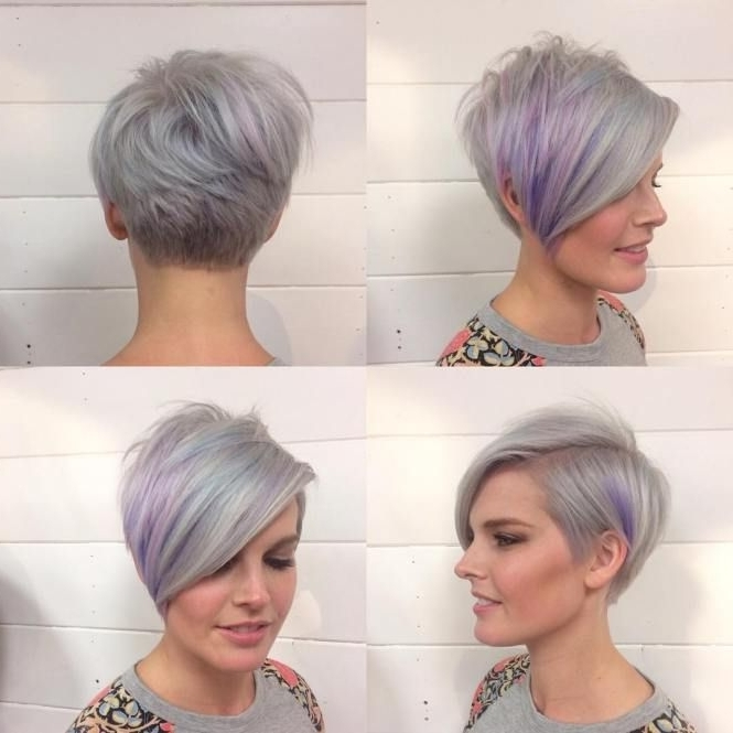 Pixie Bob (View 10 of 15)