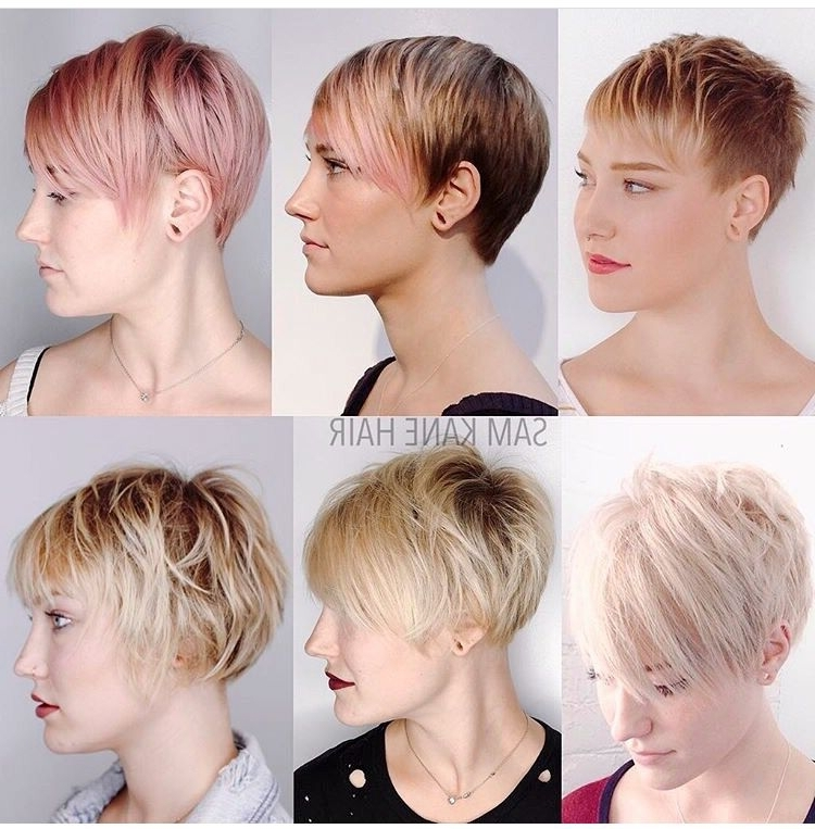 Pixie Hairstyles (View 12 of 15)