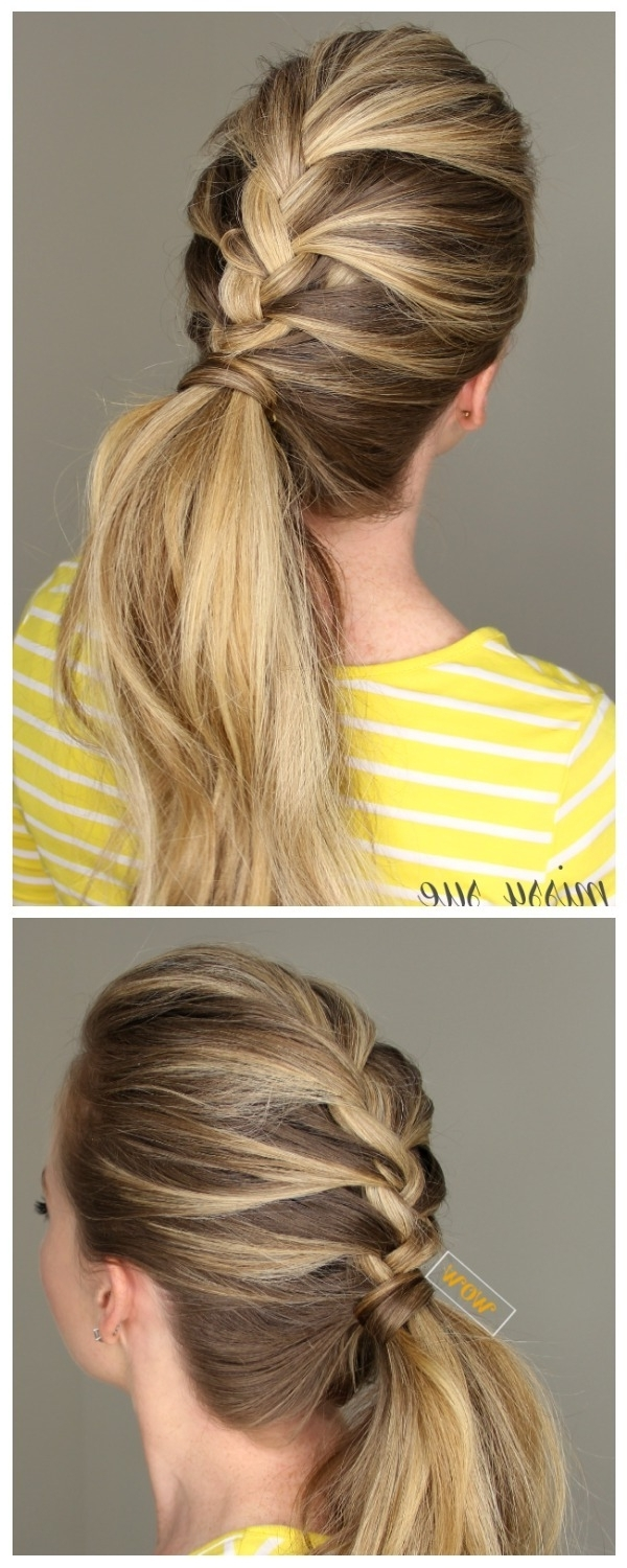 Popular French Braid Hairstyles With Stunning French Braid Hairstyles For Medium And Long Hair (View 15 of 15)