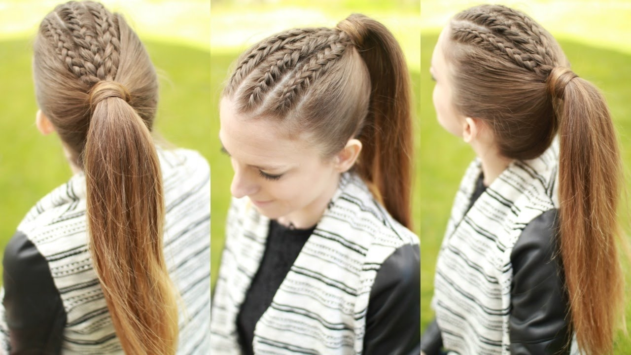 Preferred Braided Hairstyles With Ponytail With Spring Hairstyle Ponytail With French Braid Plait Hairstyles Long (View 13 of 15)