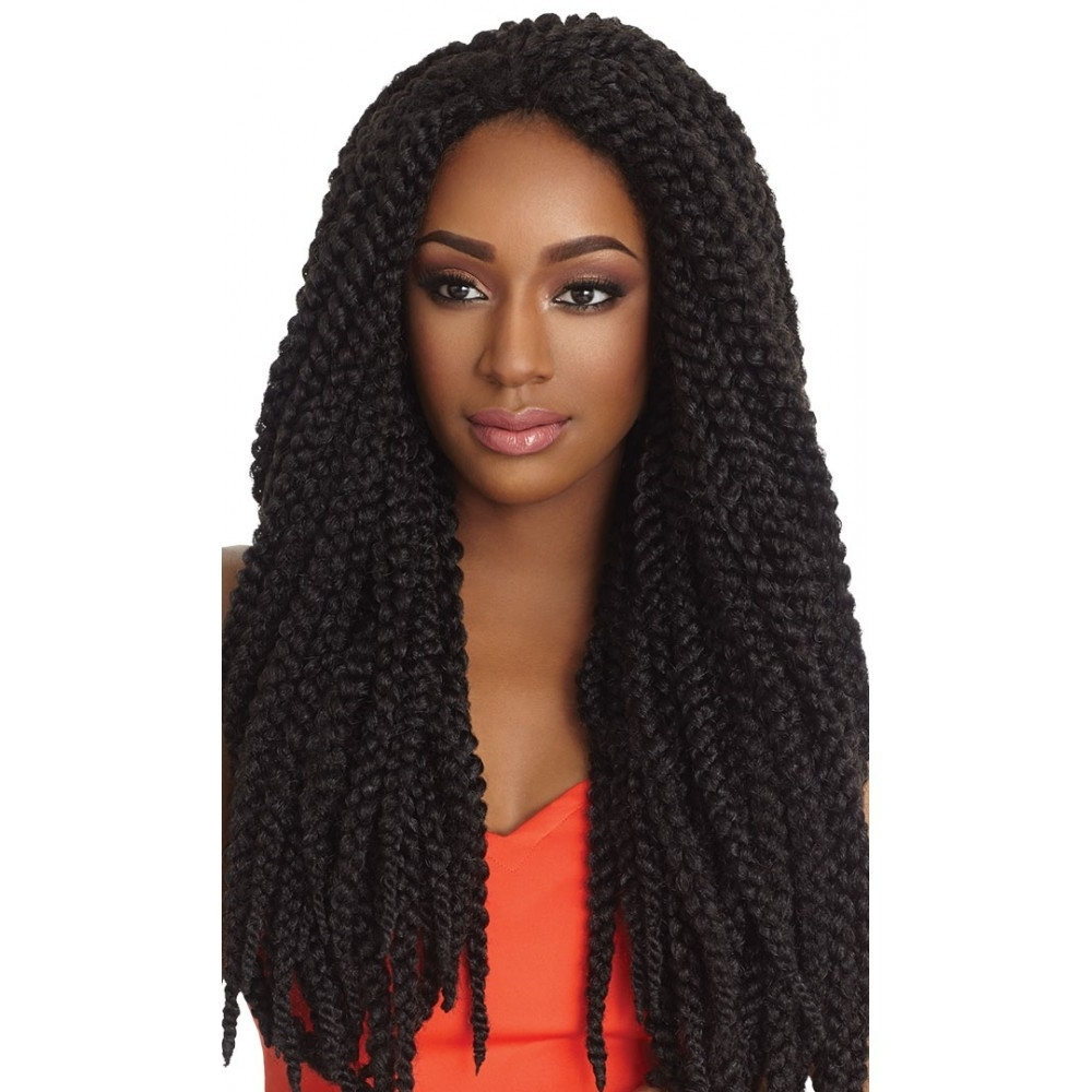 Preferred Wigs Braided Hairstyles For Outre X Pression Braid – 3D Braid (View 9 of 15)