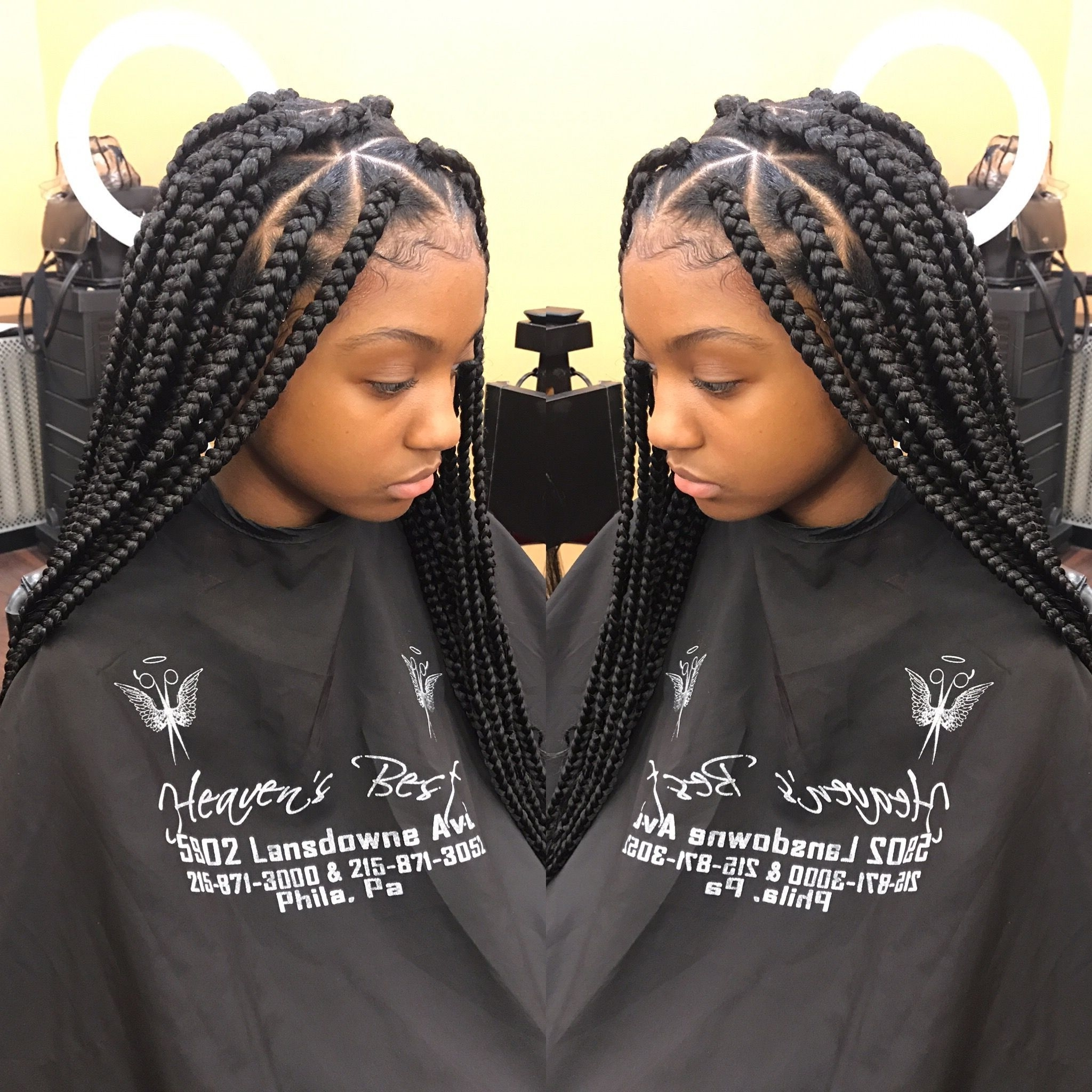 Recent Triangle Box Braids Hairstyles With Regard To Triangle Box Braids (View 10 of 15)