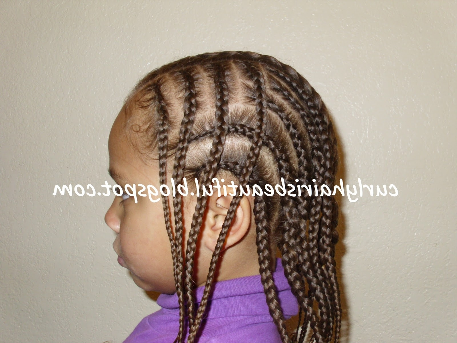 Recent Wavy Straight Back Braids Inside Curly Hair Is Beautiful!: Braided Faux Hawk With Flair (View 12 of 15)