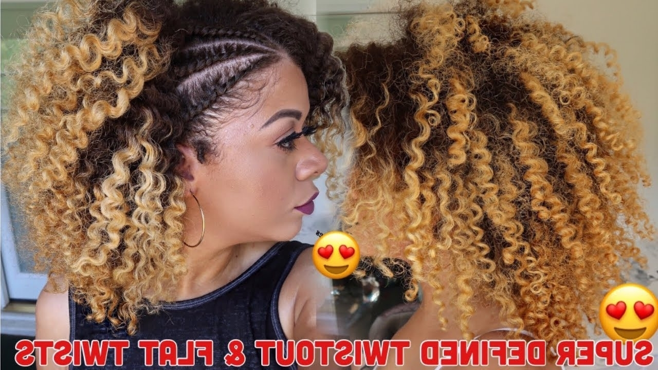 Super Defined Twist Out & Flat Twists Curly Hair (View 14 of 15)