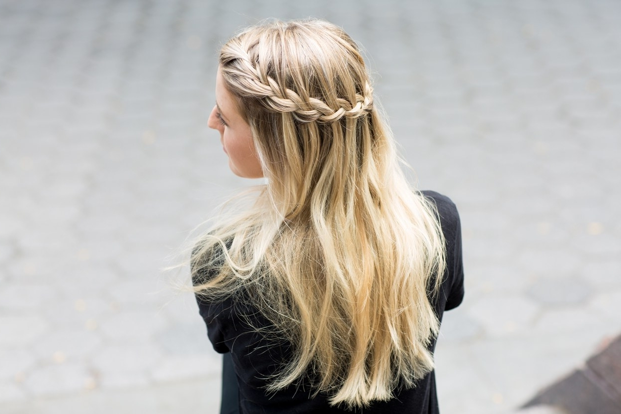 The Best Braided Hairstyles For Fine Hair And Curly Hair (View 15 of 15)