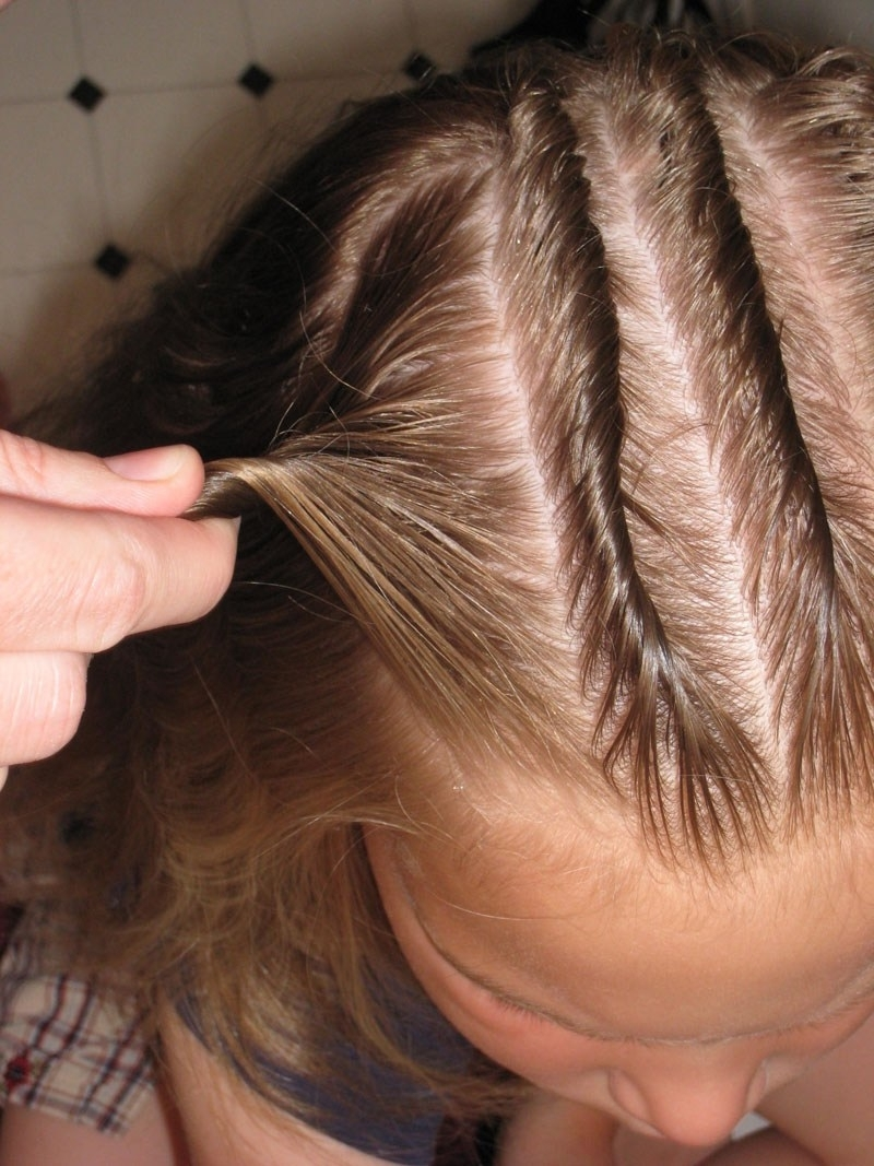 Twisted Cornrows – Babes In Hairland Throughout Preferred Cornrows With A Twist (View 8 of 15)