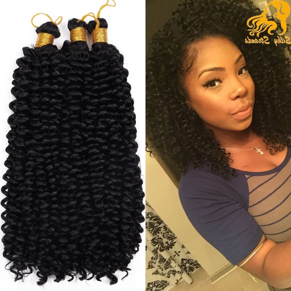 Water Wave Crochet Braids Curly Hair Freetress Crochet Curly Hair With Regard To Most Current Curly Hairstyle With Crochet Braids (View 8 of 15)