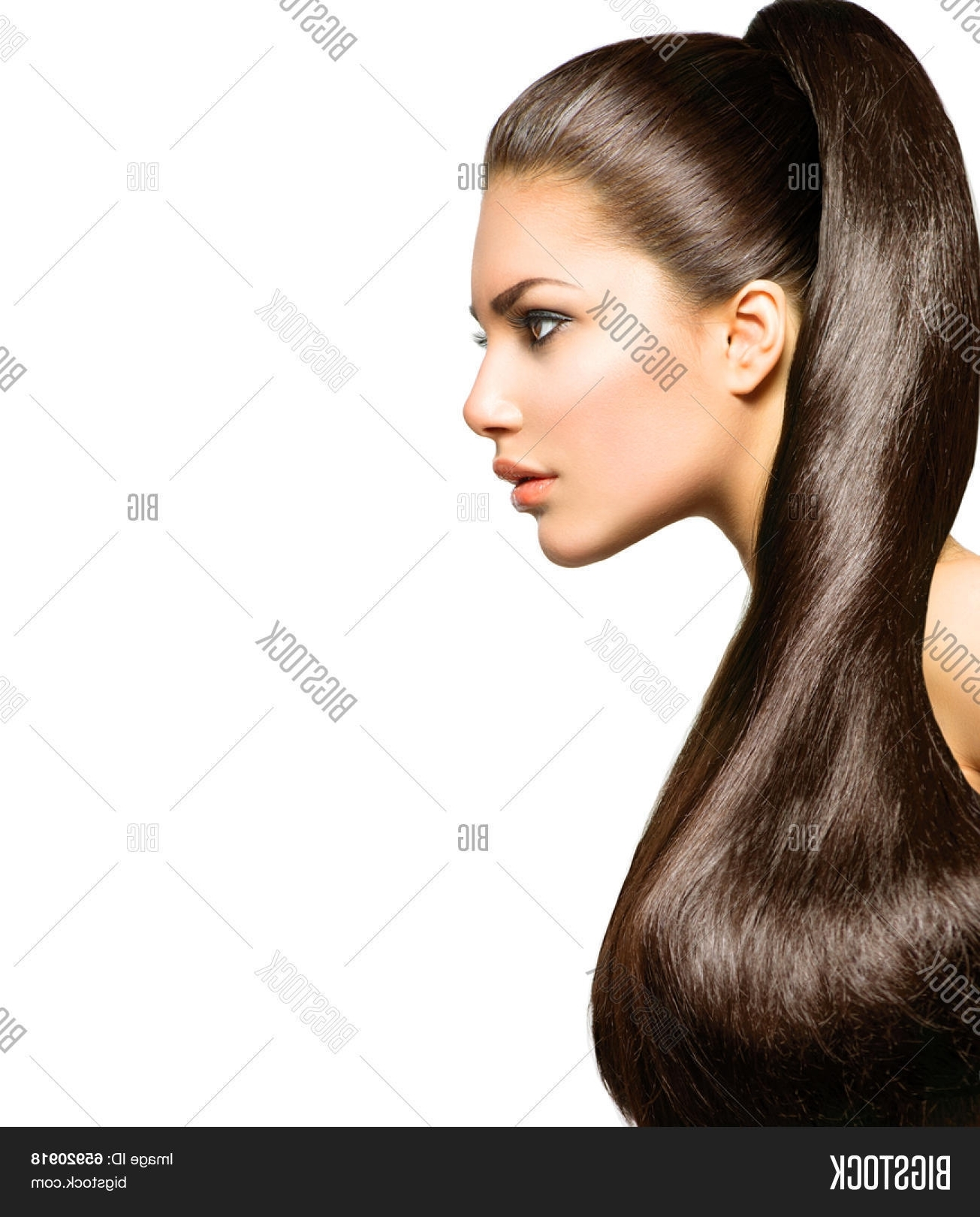 2017 Ponytail Hairstyles For Brunettes In Ponytail Hairstyle. Image & Photo (Free Trial) (Gallery 14 of 20)