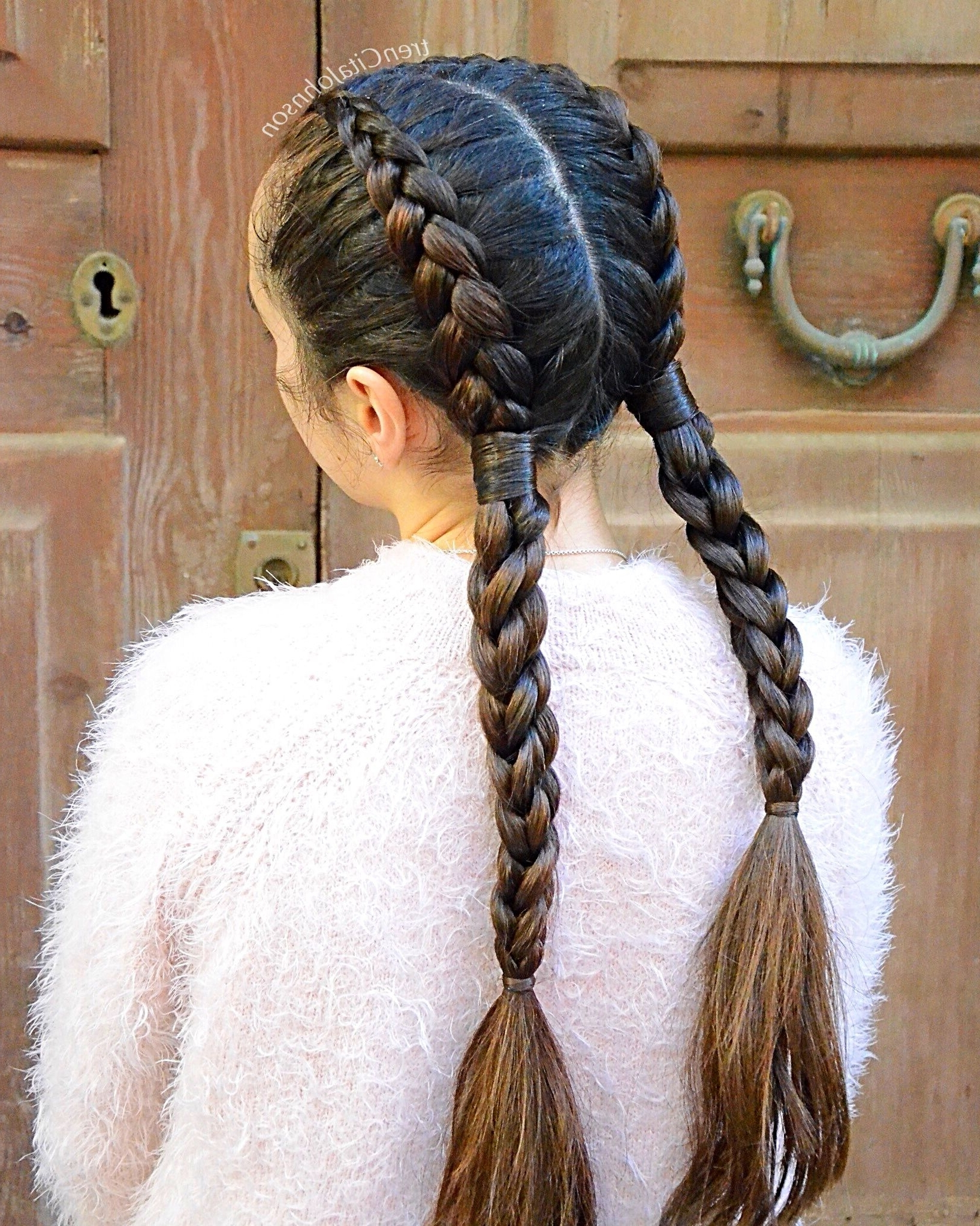 2018 Loose 3D Dutch Braid Hairstyles With Regard To Pigtail Combo Braids With Dutch And 3D Split Twists (View 1 of 20)