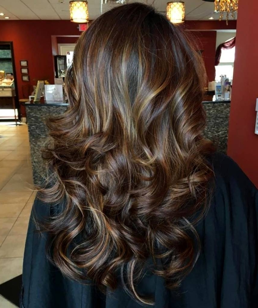 2018 Maple Bronde Hairstyles With Highlights Within Golden Blonde Highlights On Dark Brown Hair – Weddinghairstyles (View 2 of 20)