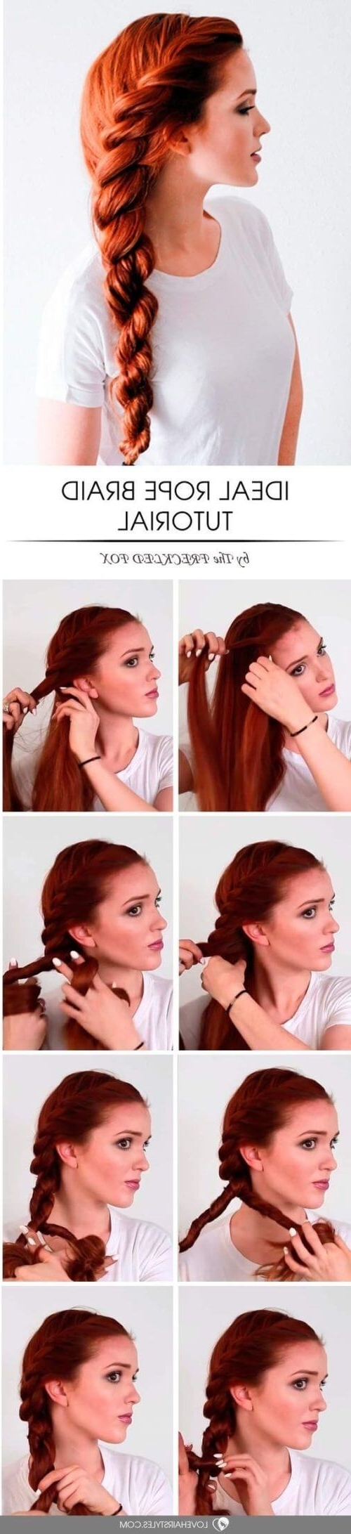 25 Best Tutorials With Hairstyles Braiding Hair For You With Favorite Entwining Braided Ponytail Hairstyles (View 1 of 20)