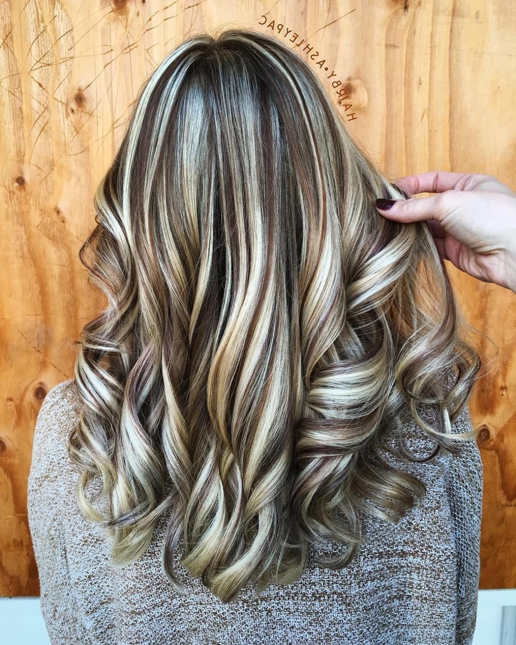 50 Ideas For Light Brown Hair With Highlights And Lowlights Pertaining To Preferred Dark Brown Hair Hairstyles With Silver Blonde Highlights (View 7 of 20)