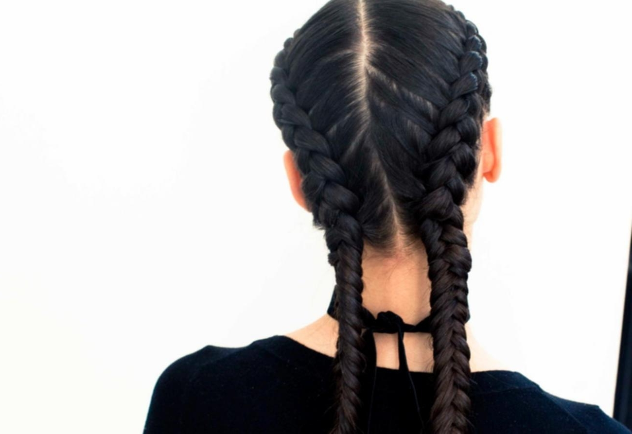Best And Newest Reverse French Braid Ponytail Hairstyles In Double Reverse French Braid Two French Braids Hairstyles Images (View 2 of 20)