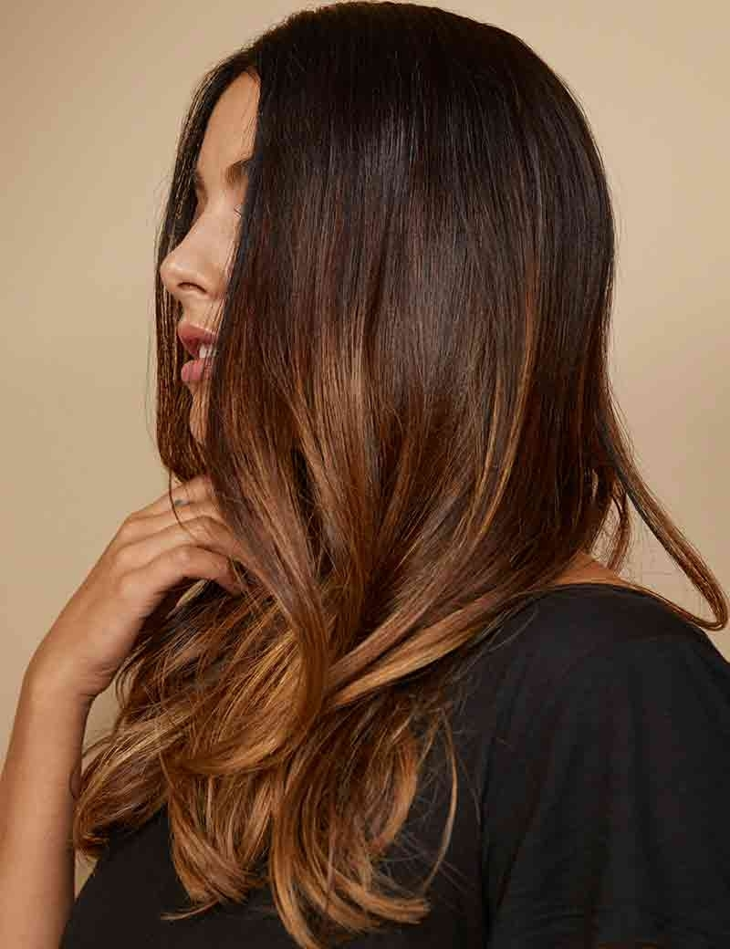 Beyond Brunette: Brown Hair With Toffee Brown Ombre (View 4 of 20)