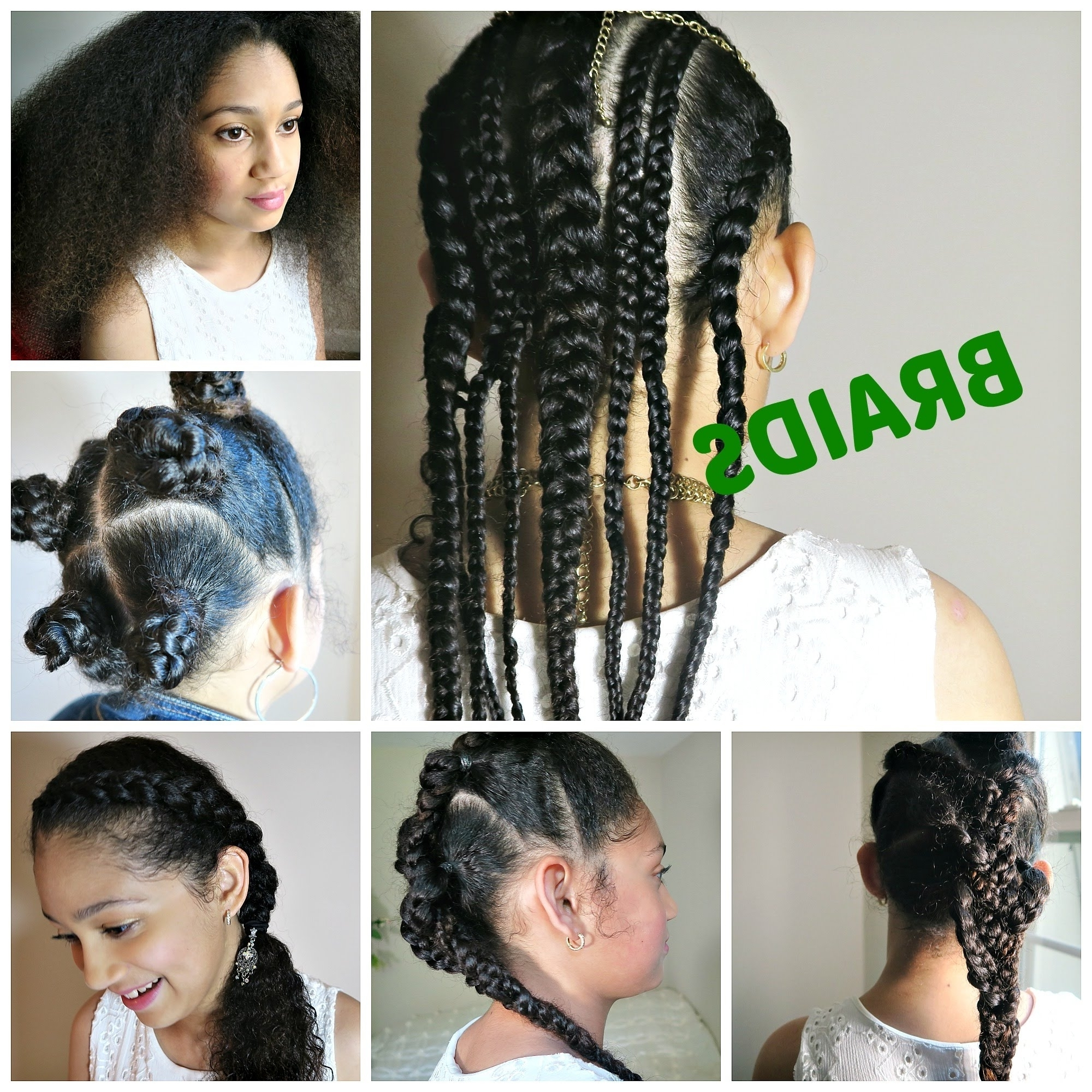 Braided Hairstyles For School 2018 – Braid Hairstyles 2018 Regarding Recent Entwining Braided Ponytail Hairstyles (View 4 of 20)